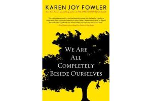 we are all completely beside ourselves cover