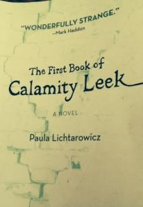 Calamity Leek cover image
