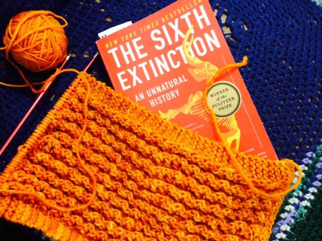 Yarn Along photo 4.13.16